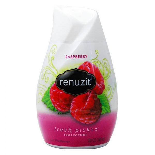 Renuzit Fresh Picked Collection Gel Air Freshener, Raspberry 1413615